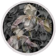 Angelic Hosts  The Hooded Nun Orchid Round Beach Towel