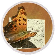 Anglewing Butterfly Round Beach Towel