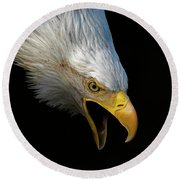 Angry Bald Eagle Portrait Round Beach Towel