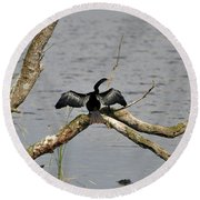 Anhinga And Alligator Round Beach Towel
