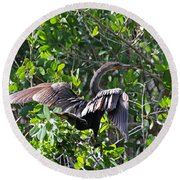 Anhinga In The Sun Round Beach Towel