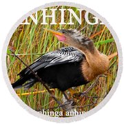 Anhinga The Swimming Bird Round Beach Towel