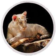 Animal - Cat - A Baby Snow Tiger Round Beach Towel