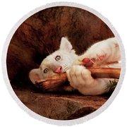 Animal - Cat - My Chew Toy Round Beach Towel