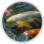 Animal - Fish - Bestow Good Fortune Round Beach Towel