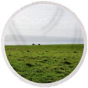 Animals Grazing In A Field Along The Cliffs Of Moher Round Beach Towel