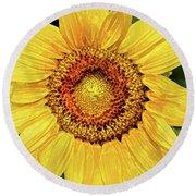 Another Artistic Sunflower Round Beach Towel