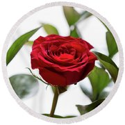 Another Rose Round Beach Towel