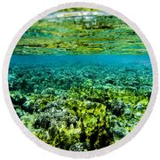 Ant Atoll Reef Round Beach Towel