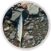 Antarctic Feather Round Beach Towel