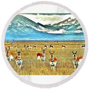Antelope At Attention Round Beach Towel