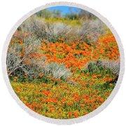 Antelope Valley Poppies Round Beach Towel
