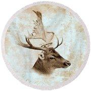Antique Deer Round Beach Towel