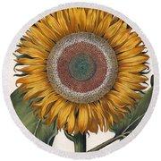 Antique Sunflower Print Round Beach Towel