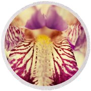 Antiqued Iris Round Beach Towel