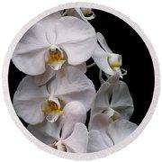 Aphrodite - White Orchid Round Beach Towel