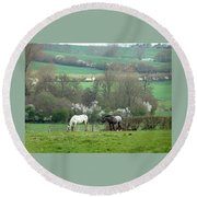 Appaloosa In May Round Beach Towel