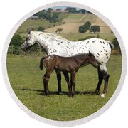 Appaloosa Mare And Foal Round Beach Towel