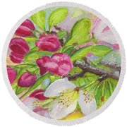 Apple Blossom Buds On A Greeting Card Round Beach Towel