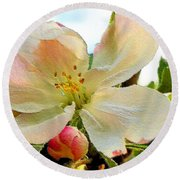 Apple Blossom Round Beach Towel