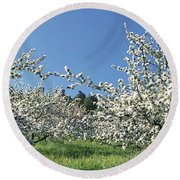 Apple Blossom Trees Norway Round Beach Towel
