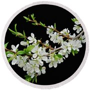 Apple Blossoms 2 Round Beach Towel