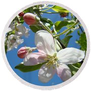 Apple Blossoms Art Prints Blue Sky Spring Baslee Troutman Round Beach Towel