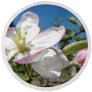 Apple Blossoms Art Prints Canvas Blue Sky Pink White Blossoms Round Beach Towel