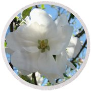 Apple Blossoms Art Prints Canvas Spring Tree Blossom Baslee Troutman Round Beach Towel