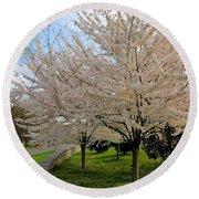 Apple Blossoms Round Beach Towel