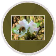 Apple Blossoms With Honey Bee Round Beach Towel