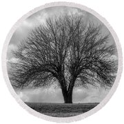 Apple Tree Bw Round Beach Towel