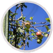 Apple Tree With Apples And Flowers. Amazing Nature Round Beach Towel