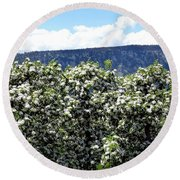 Apple Trees In Bloom     Round Beach Towel