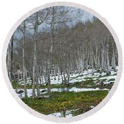 Approaching Spring In The Aspen Forest Round Beach Towel by Cascade Colors