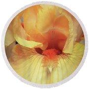 Apricot Iris Round Beach Towel