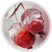 April Ice Storm Apples Round Beach Towel