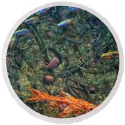 Aquarium 2 Round Beach Towel by James W Johnson