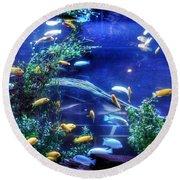 Aquarium Fish Round Beach Towel