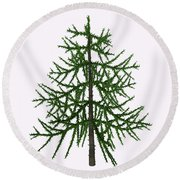 Araucaria Sp Tree Round Beach Towel