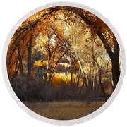 Arch Of Trees Round Beach Towel