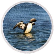 Arctic Loon Round Beach Towel