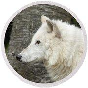 Arctic Wolf - On Watch Round Beach Towel
