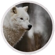 Arctic Wolf Pictures 1242 Round Beach Towel