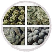 Arizona Cacti  Round Beach Towel