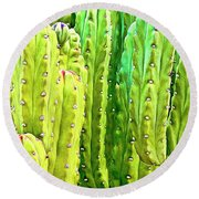 Arizona Cactus #16 Round Beach Towel