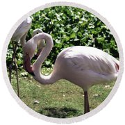 Arizona Flamingos Round Beach Towel