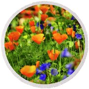 Arizona Wildflowers Round Beach Towel