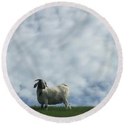 Art Goat Round Beach Towel