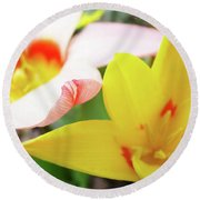 Art Prints Pink Tulip Yellow Tulips Giclee Prints Baslee Troutman Round Beach Towel